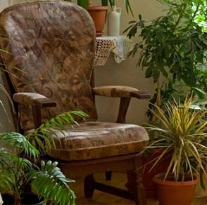 piante casa500